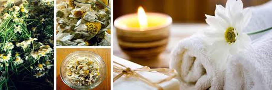 aromaterapia-camomila