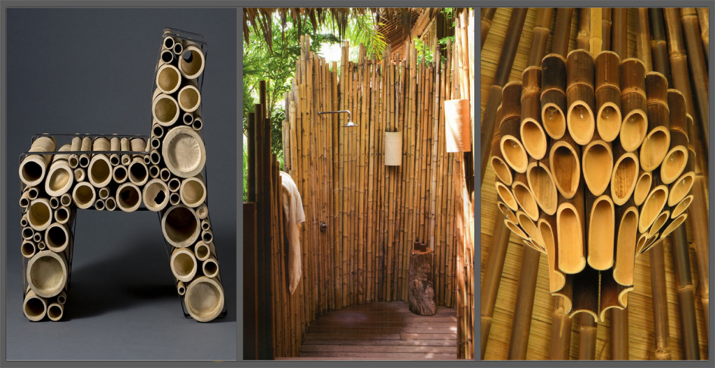 Bambu et dell oro for Canne di bambu da arredamento