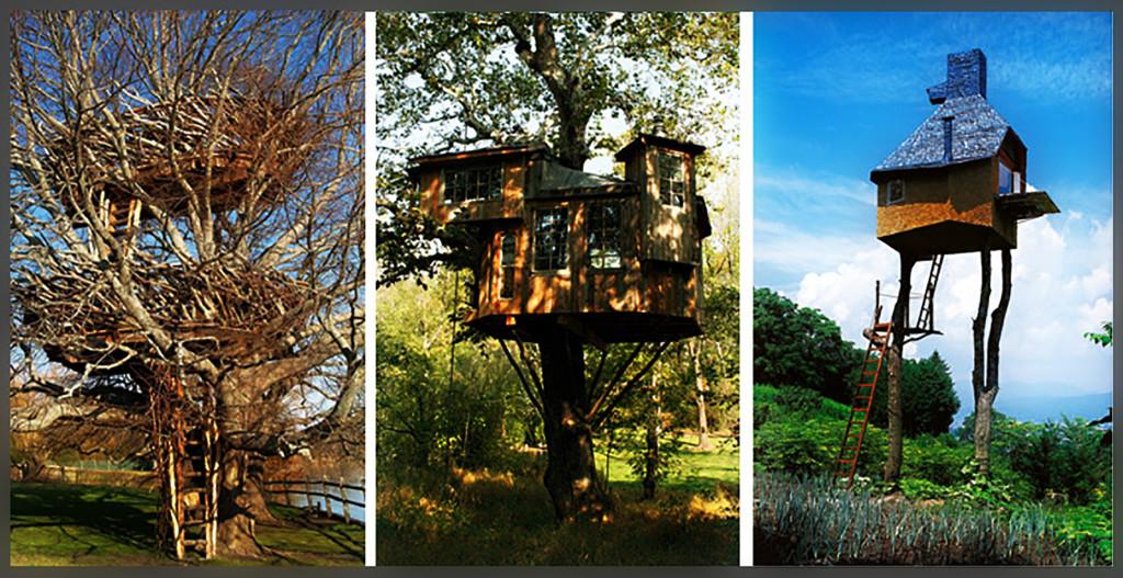 case-sull'albero-2