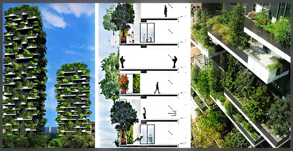 case-sull'albero-5