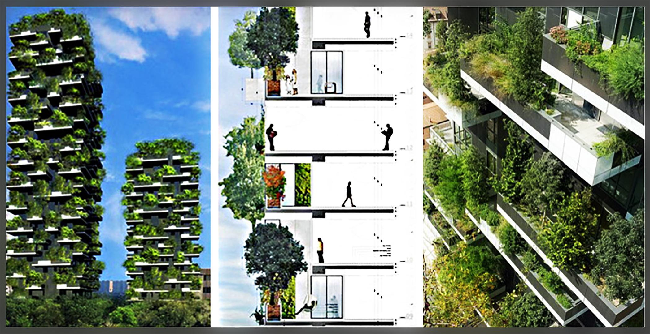 Case sull albero o alberi sulle case for Case a milano