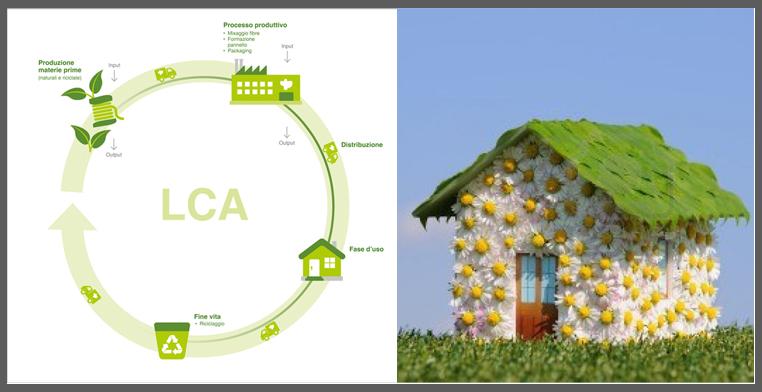 ciclo di vita_ecologico