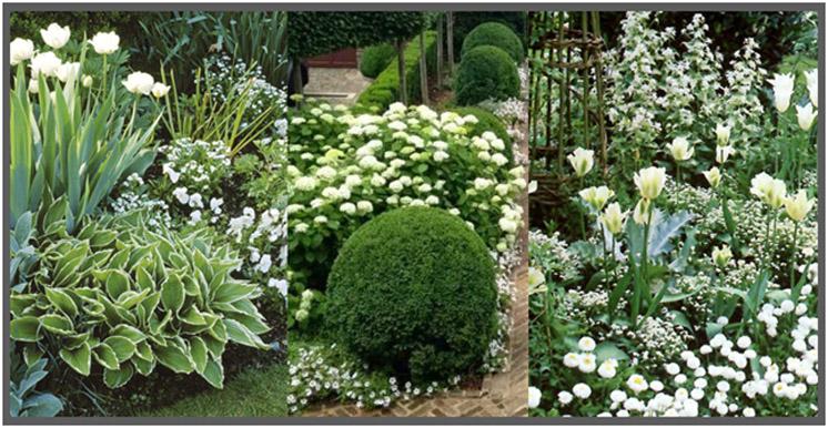 il-giardino-stile-e-colori-3