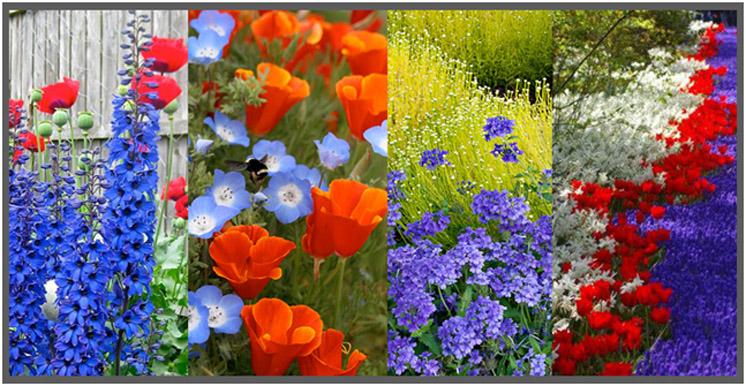 il-giardino-stile-e-colori-4
