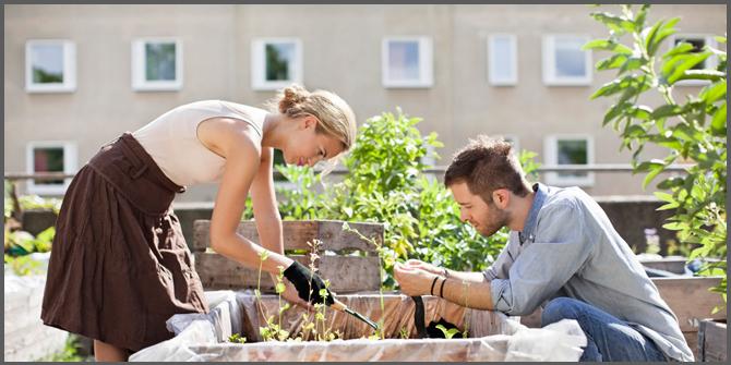 orto sul tetto giardino