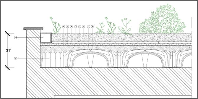 come fare un tetto giardino