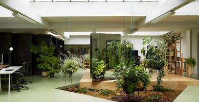 Giardino in casa si pu for Foto case con giardino