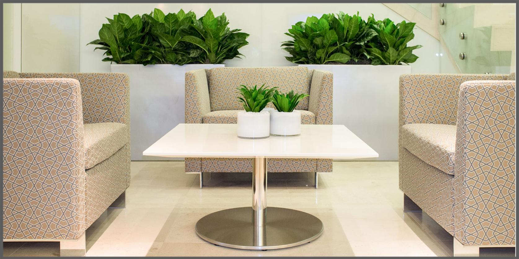 Conosciuto Arredare con le piante: alcuni consigli fondamentali  QB61