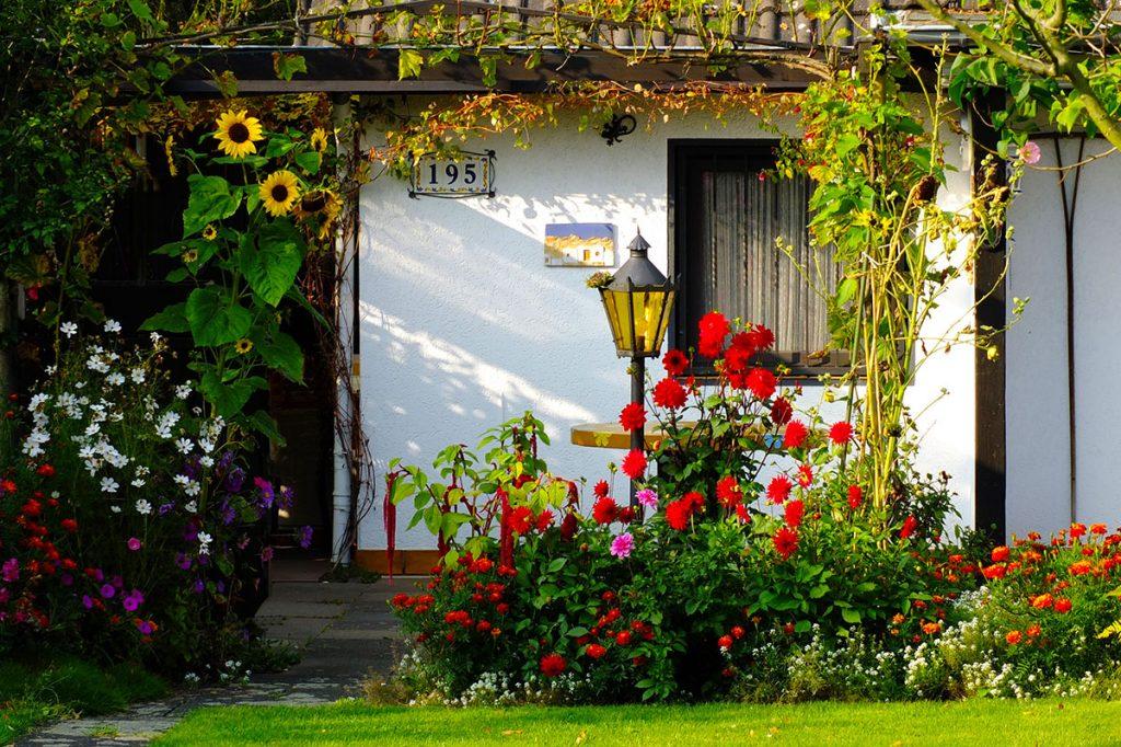 Aiuole giardino country