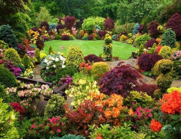 Un giardino meraviglioso