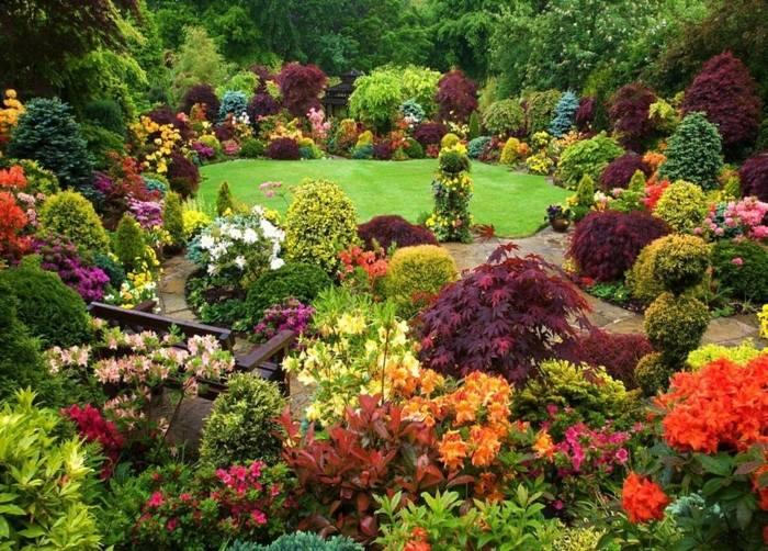 Giardino grande con fiori e piante
