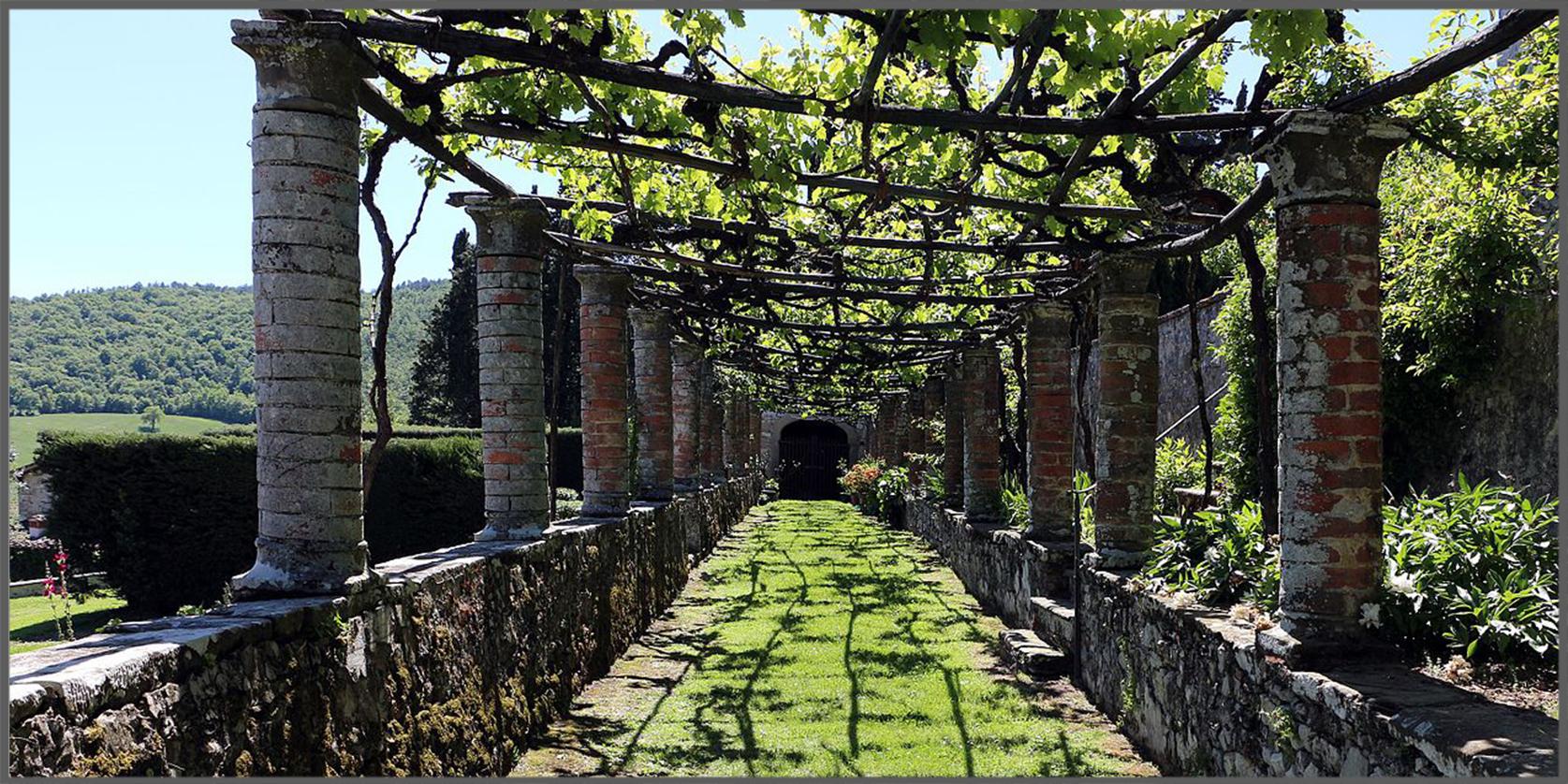 Villa Medicea del Trebbio, pergolato
