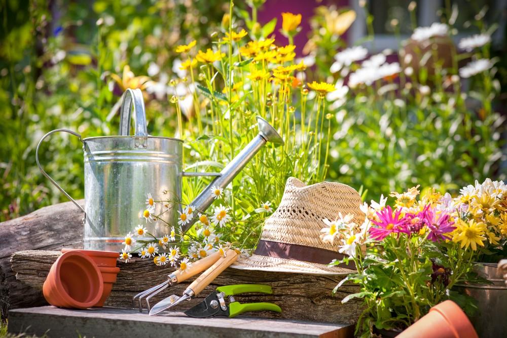 Preparare il giardino per l'estate