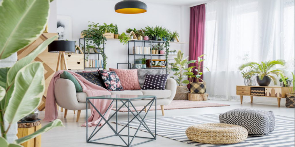 un salotto con piante decorative