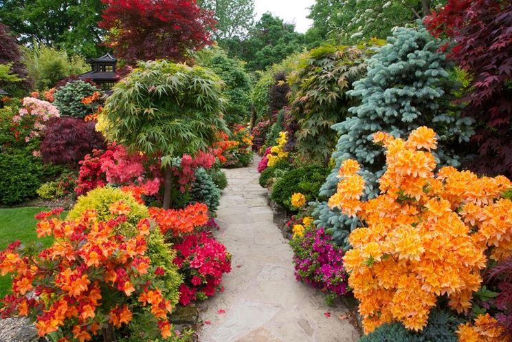 Vialetto da giardino circondato da fiori